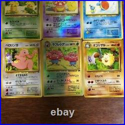 Pokemon Card Southern Island 18 Cards Complete Set Old back from Japan